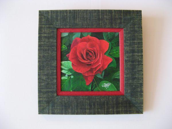 Cuadro realista en oleo sobre tablilla de una rosa roja